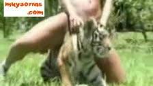 Un tigre féroce manger une chatte