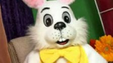 Un conejo muy cachondo
