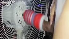Você quer transar e só tem um ventilador por perto